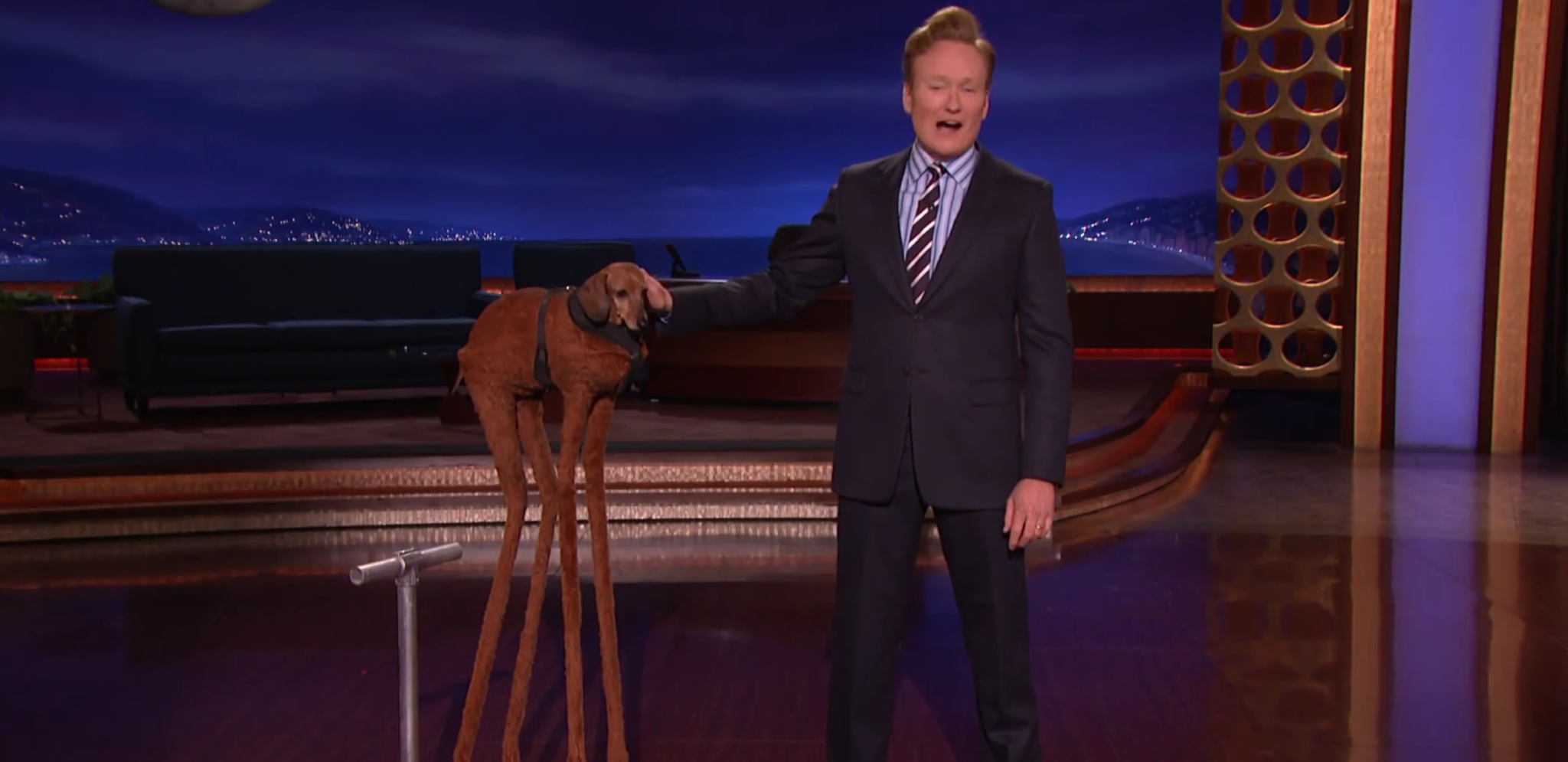 Late Night in the Morning – Conan O'Brien Reminds Us Why We Should All Be Happy About The Election