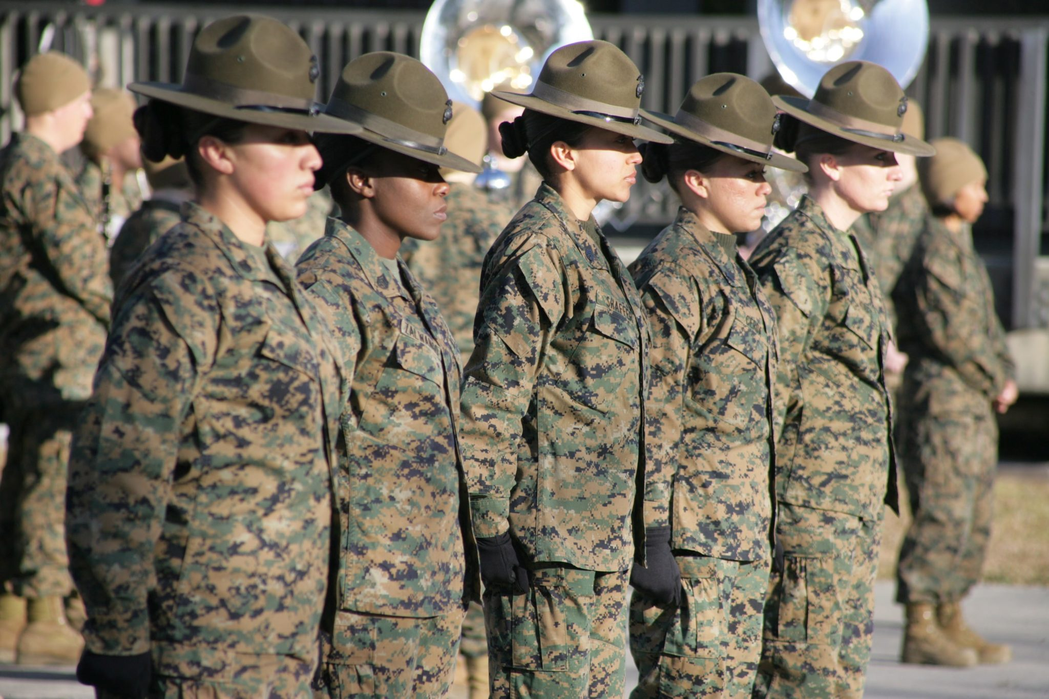 O.K. Ladies Now Let's Get in Formation (For Selective Service)